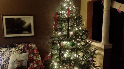 farrelly-christmas-tree